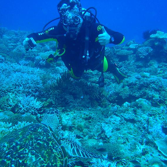 Diving Menu