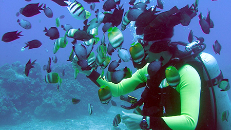 scuba diving,Boracay, Philippines